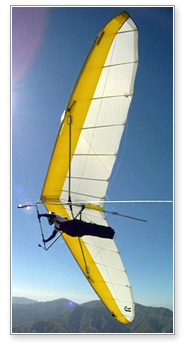 North Wing Design · Freedom Hang Glider