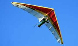 North Wing Pulse hang glider